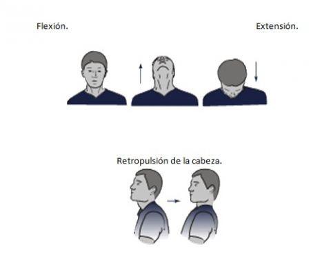 ejercvicios-2.jpg