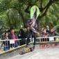 Se realizó en Escobar la primera fecha del Campeonato Argentino de Skate
