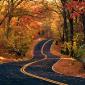 En la vida, si conoces el camino seguro, sólo necesitas seguirlo